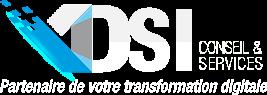 DSI Conseil & Services - Développement sur mesure - Offshore